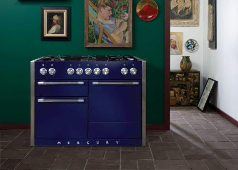 Mercury blueberry cooker